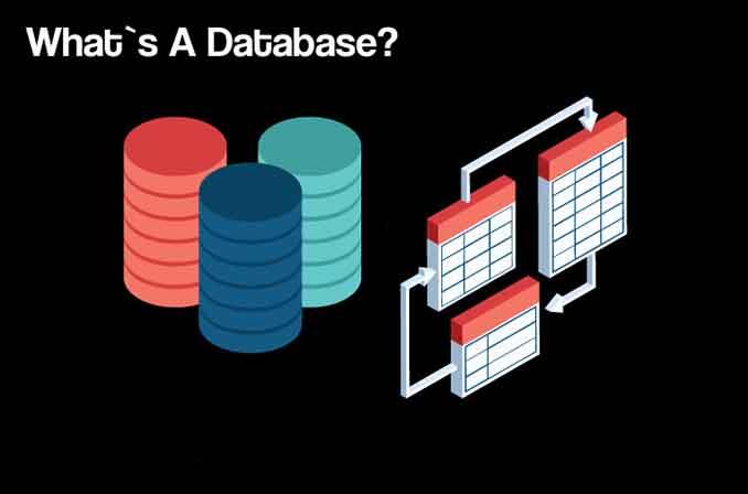درآمدی بر مفهوم Database و انواع Data Model