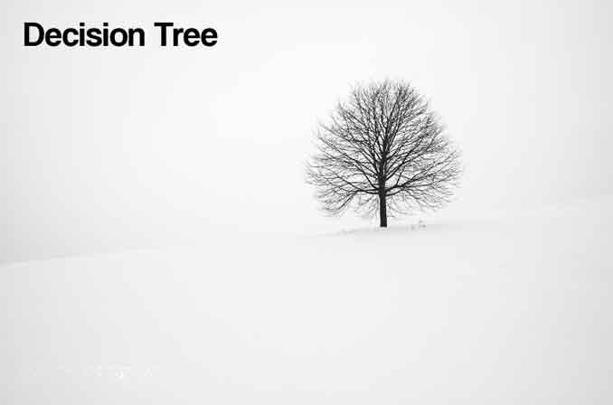 Decision Tree (درخت تصمیم) چیست؟